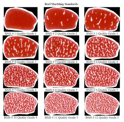 Wagyu Beef Marbling Standards