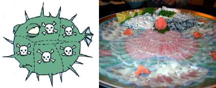 Fugu: le poisson tueur ou poisson globe / poisson-ballon