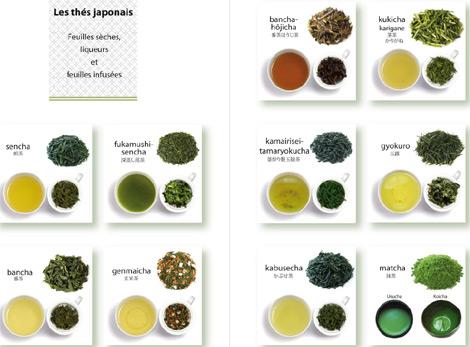 Les diverses sortes de thés japonais