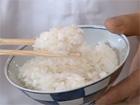 Le riz japonais